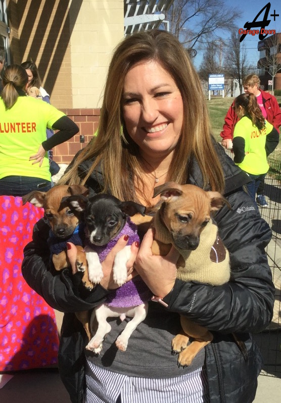 Puppy Bowl Charity Donation Event A Plus Garage Doors